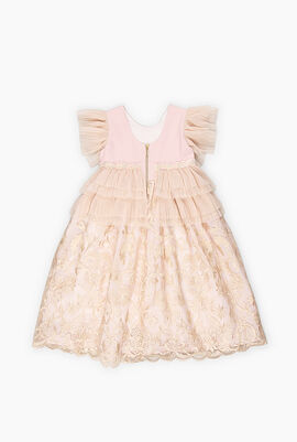 Ruffle and Embroidered Lace Dress