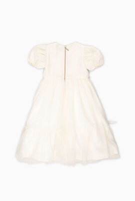 Puffed Sleeves Embroidered Dress