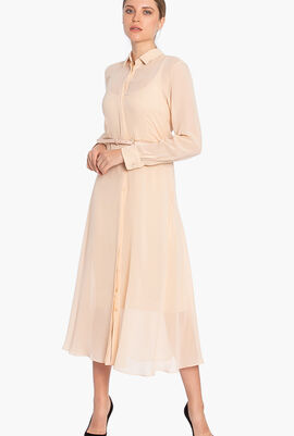 Delfi Full Sleeves Dress