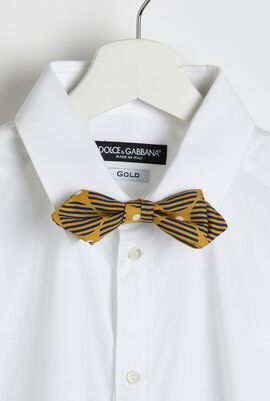 Striped Printed Bow Tie